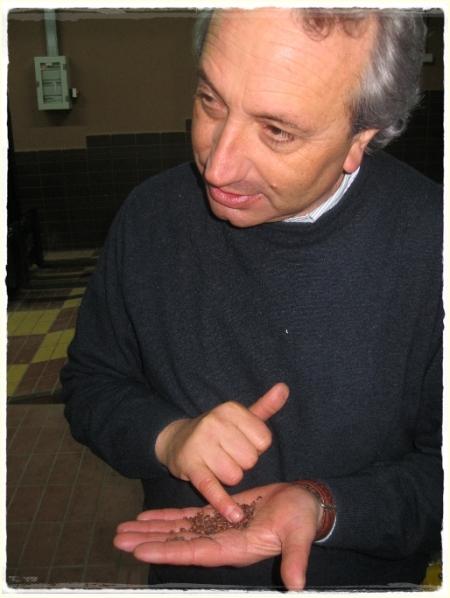 Luigi Moio - foto A. Di Costanzo