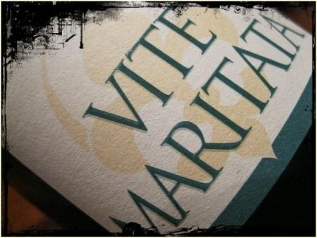Asprinio d'Aversa Vite Maritata 2011 I Borboni - foto A. Di Costanzo