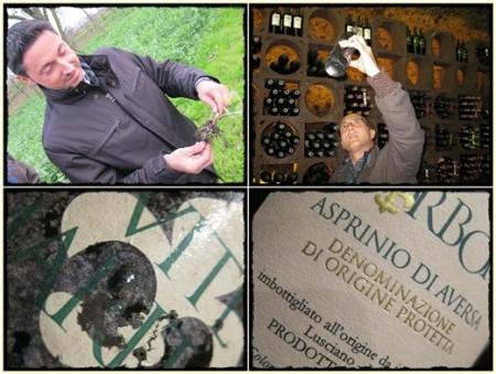 Gianluca Tommaselli, Carlo Numeroso, l'Asprinio 1998 - foto A. Di Costanzo