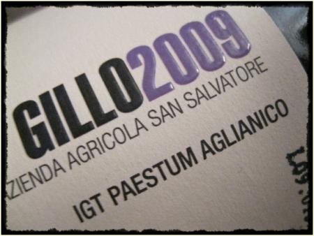 Paestum Aglianico Gillo 2009 Az. Agr. San Salvatore - foto A. Di Costanzo