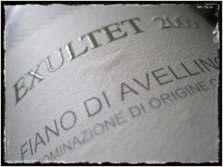 Fiano di Avellino Exultet 2009 Quintodecimo - foto A. Di Costanzo.docx