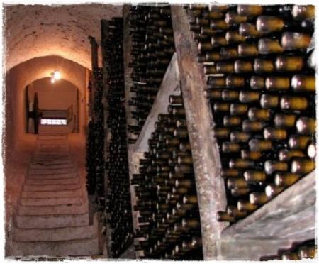 Masseria Felicia, cantina (le scale)