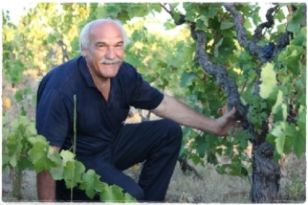 Dario Cavallo i una delle sue vigne - foto Archivio