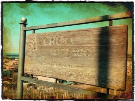 CrunaDeLago, vigneto La sibilla - foto A. Di Costanzo