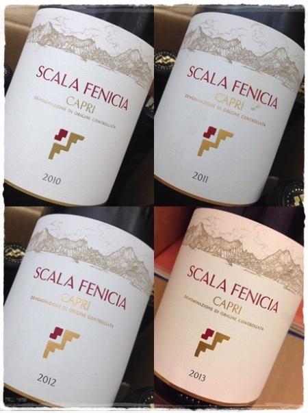 Verticale 2010-2011-2012-2013 Capri bianco Scala Fenicia - foto L'Arcante