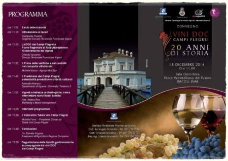 Convegno vini doc Campi Flegrei