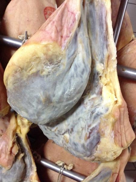 Ciarcia, la Culaccia a sx (culatello irpino), il Fiocco a dx - foto A. Di Costanzo