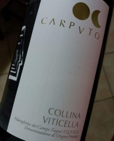 Falanghina dei Campi Flegrei Collina Viticella 2017 Carputo Vini